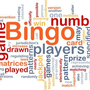 Bingo Lingo Small