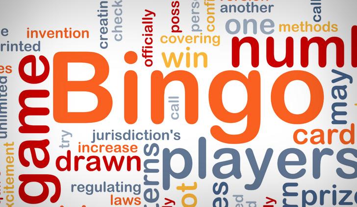Bingo Lingo Large Image