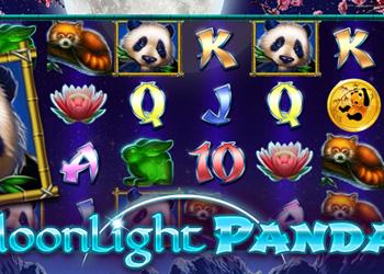 Moonlight Panda Slot Game