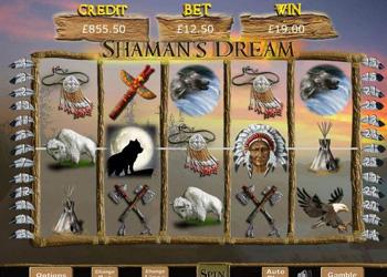 Shaman's Dream Slot Game