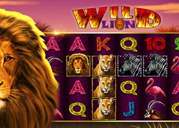 Wild Lion Slot Game